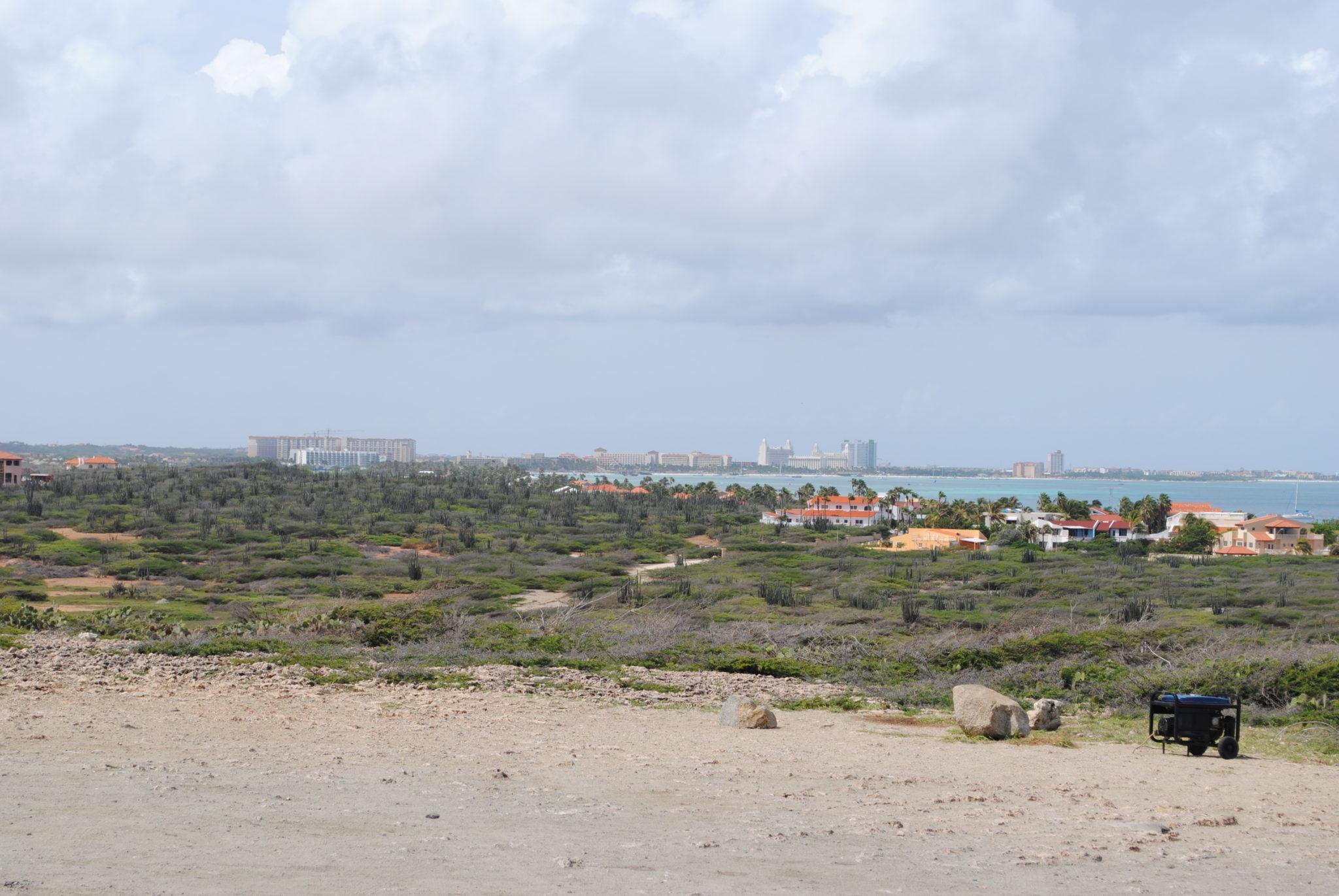 Vegetatie Aruba